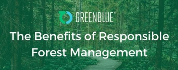 Webinars: The Benefits of Responsible Forest Management