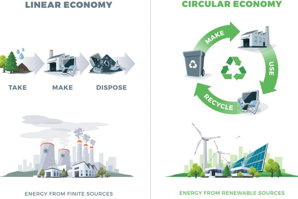 Paper and the Circular Economy